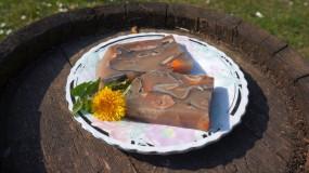 Pannonisches Fischsulz